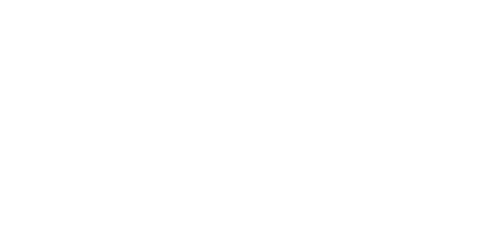 Partner Fonds Podium Kunsten