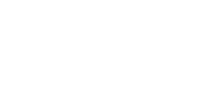 Partner VICE